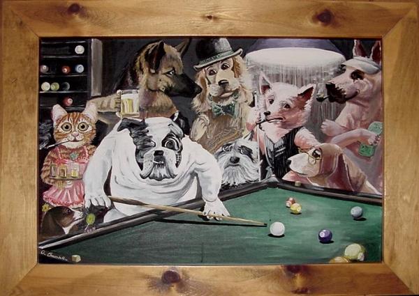 Animal Pool